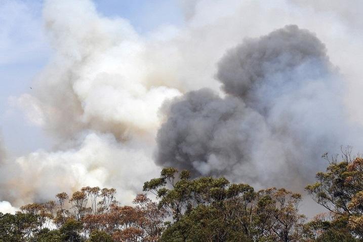 مياه الأمطار تطفئ حريقاً مشتعلاً منذ أسابيع في استراليا